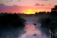 Everglades at Sunrise