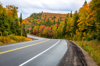 Winding Road Through a Forest of Fall Color - Ontario, Canada