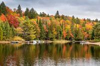 Colorful Shoreline in Autumn with Docked Motorboats - Ontario, C