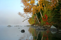 Autumn Shoreline - Haliburton, Ontario